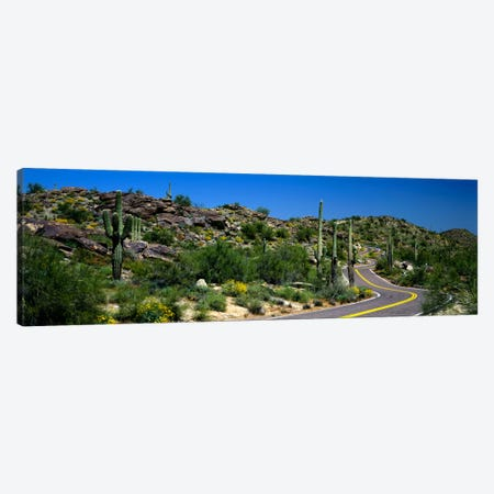 Desert Landscape Along A Winding Road, Phoenix, Arizona, USA Canvas Print #PIM51} by Panoramic Images Canvas Art Print