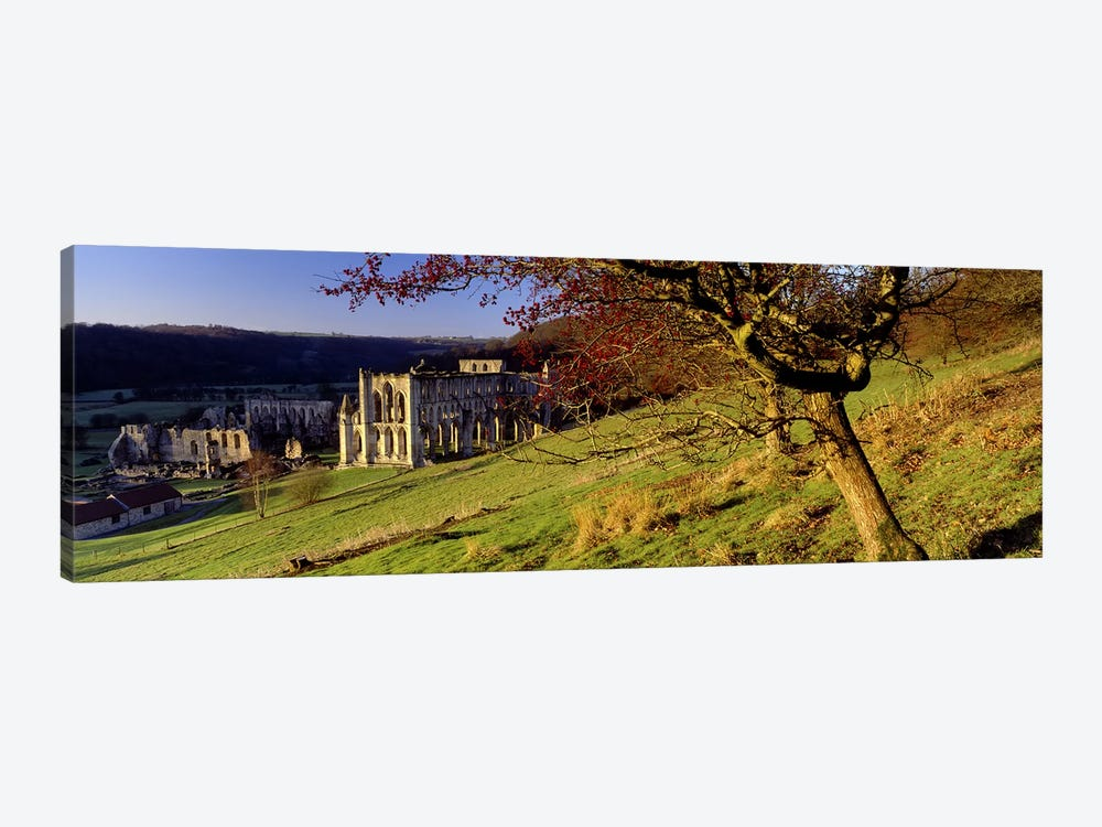 Church on A LandscapeRievaulx Abbey, North Yorkshire, England, United Kingdom by Panoramic Images 1-piece Canvas Artwork