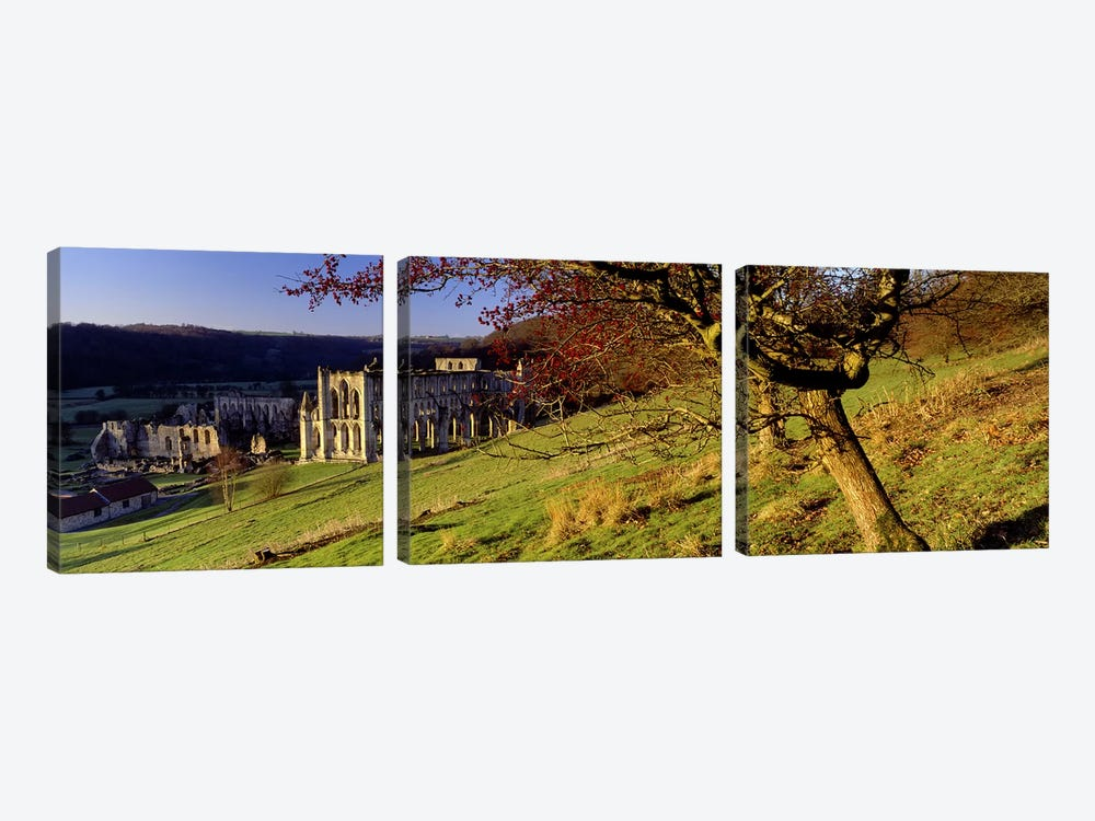 Church on A LandscapeRievaulx Abbey, North Yorkshire, England, United Kingdom by Panoramic Images 3-piece Canvas Art