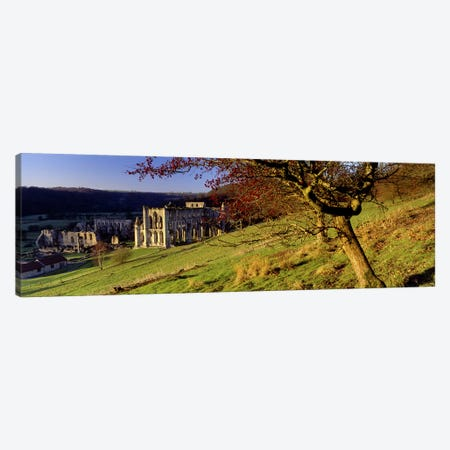 Church on A LandscapeRievaulx Abbey, North Yorkshire, England, United Kingdom Canvas Print #PIM5216} by Panoramic Images Canvas Wall Art