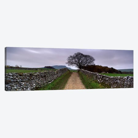 Stone Walls Along A Path, Yorkshire Dales, England, United Kingdom Canvas Print #PIM5222} by Panoramic Images Canvas Artwork