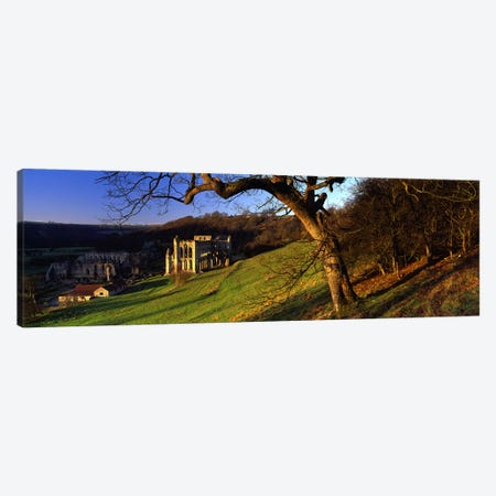 Church on A LandscapeRievaulx Abbey, North Yorkshire, England, United Kingdom Canvas Print #PIM5233} by Panoramic Images Canvas Print