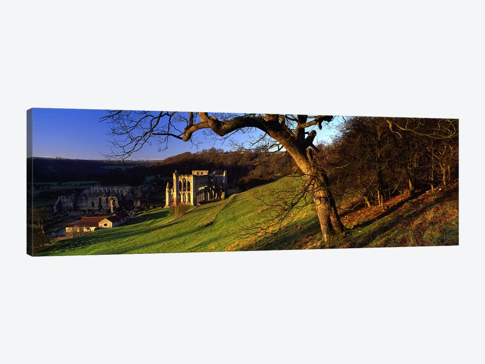 Church on A LandscapeRievaulx Abbey, North Yorkshire, England, United Kingdom by Panoramic Images 1-piece Art Print