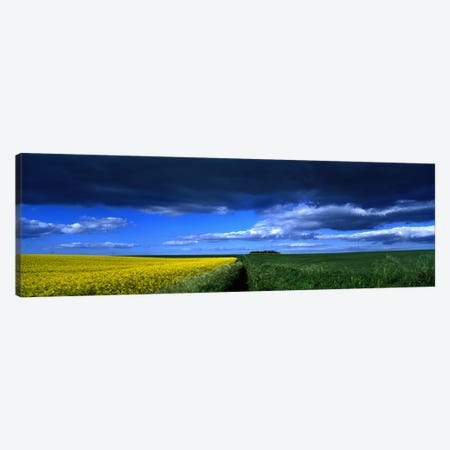 Cloudy Countryside Landscape, Yorkshire Wolds, North Yorkshire, England, United Kingdom Canvas Print #PIM5244} by Panoramic Images Art Print