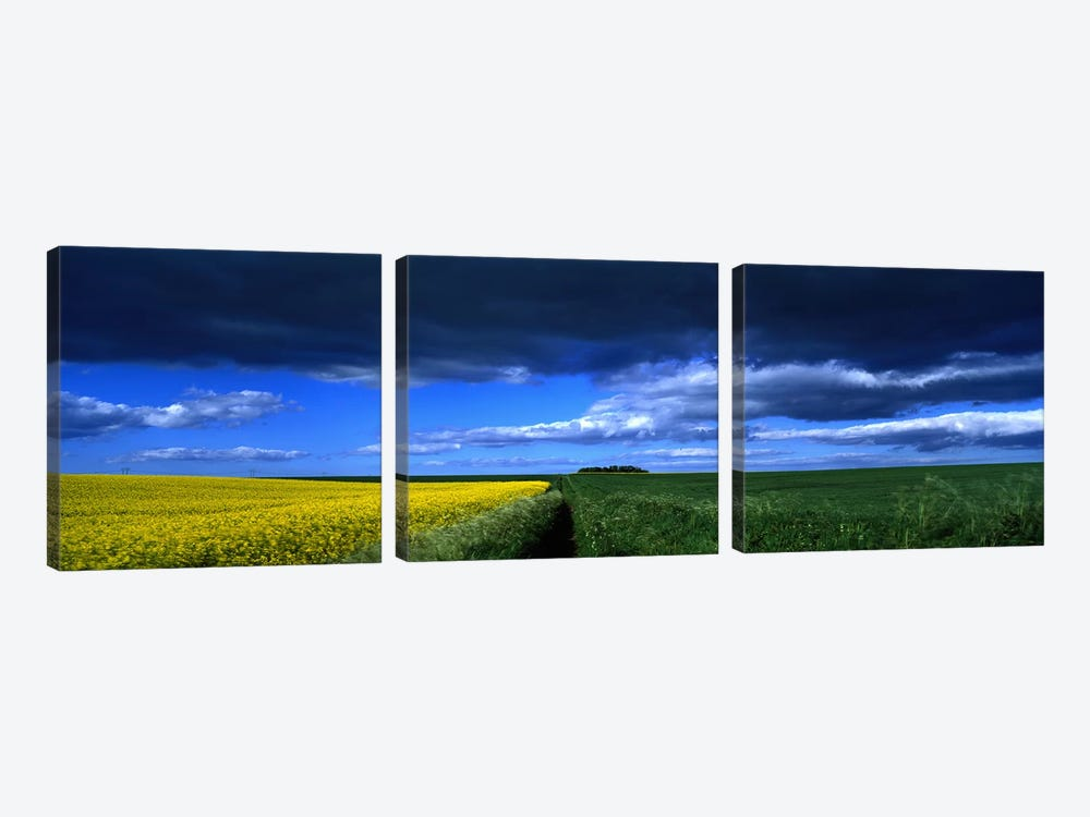 Cloudy Countryside Landscape, Yorkshire Wolds, North Yorkshire, England, United Kingdom by Panoramic Images 3-piece Canvas Print