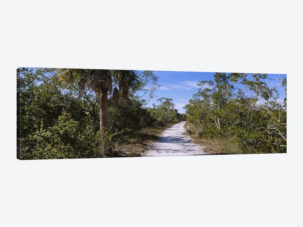 Dirt road passing through a forest, Indigo Trail, J.N. Ding Darling National Wildlife Refuge, Sanibel Island, Florida, USA by Panoramic Images 1-piece Canvas Artwork