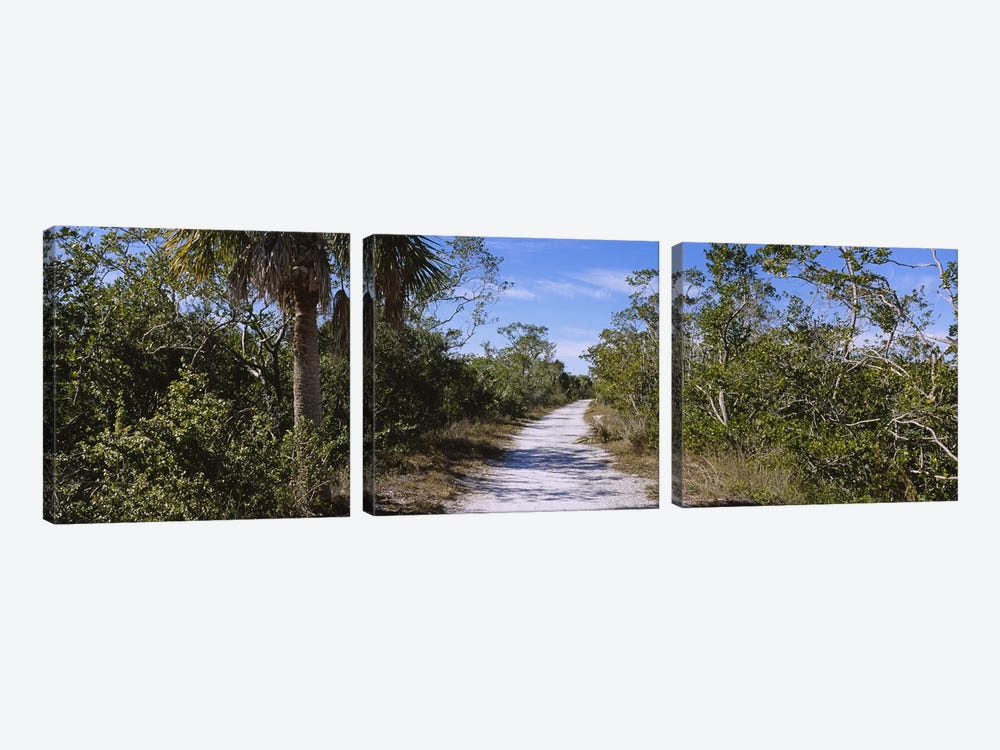 Dirt road passing through a forest, Indigo Trail, J.N. Ding Darling National Wildlife Refuge, Sanibel Island, Florida, USA by Panoramic Images 3-piece Canvas Artwork