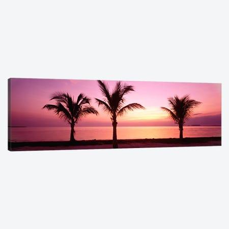 Miami Beach, Florida, USA Canvas Print #PIM53} by Panoramic Images Canvas Print