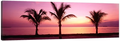 Miami Beach, Florida, USA Canvas Art Print