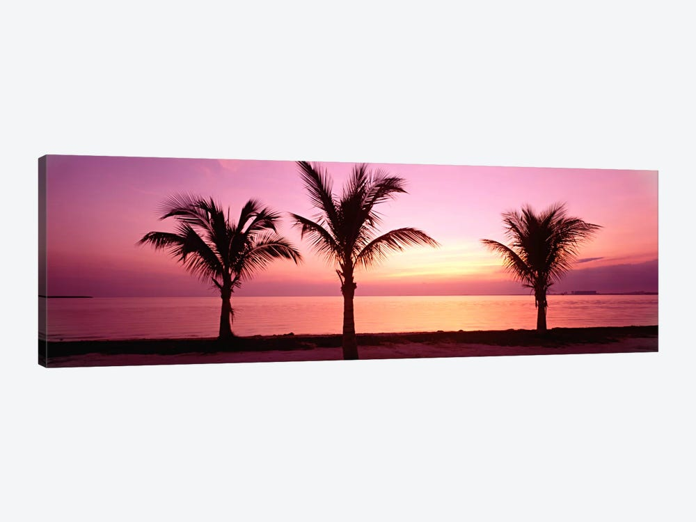 Miami Beach, Florida, USA by Panoramic Images 1-piece Canvas Art