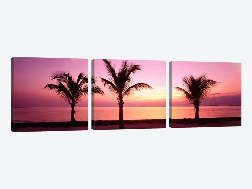 Miami Beach, Florida, USA by Panoramic Images 3-piece Canvas Artwork