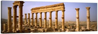 Old ruins on a landscape, Palmyra, Syria Canvas Art Print
