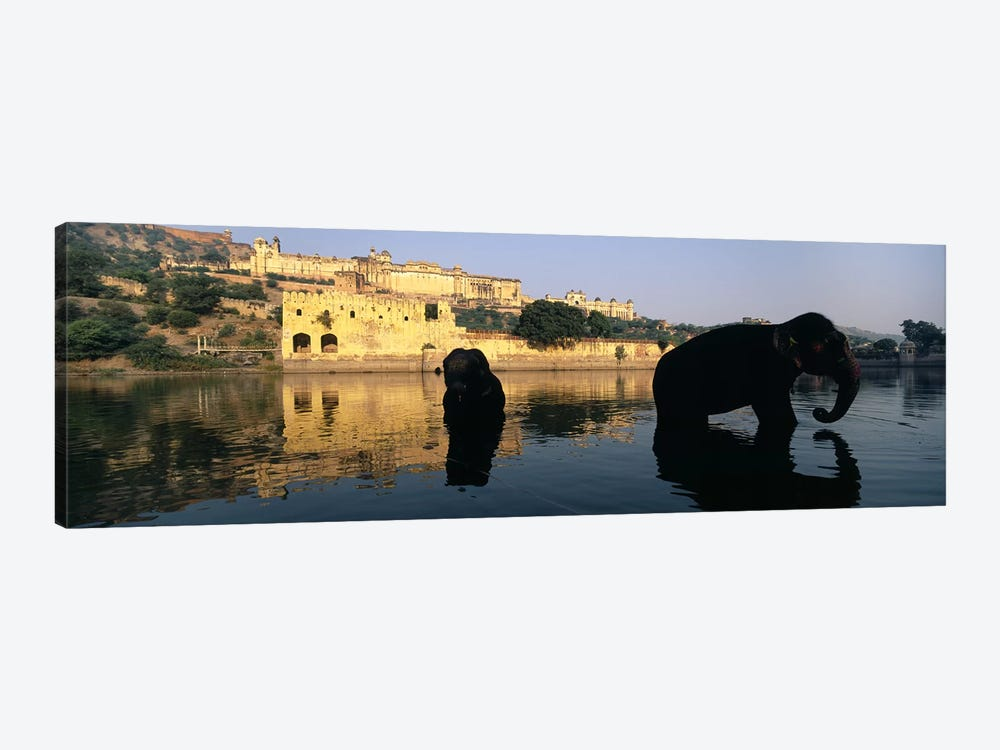 Silhouette of two elephants in a river, Amber Fort, Jaipur, Rajasthan, India by Panoramic Images 1-piece Canvas Art