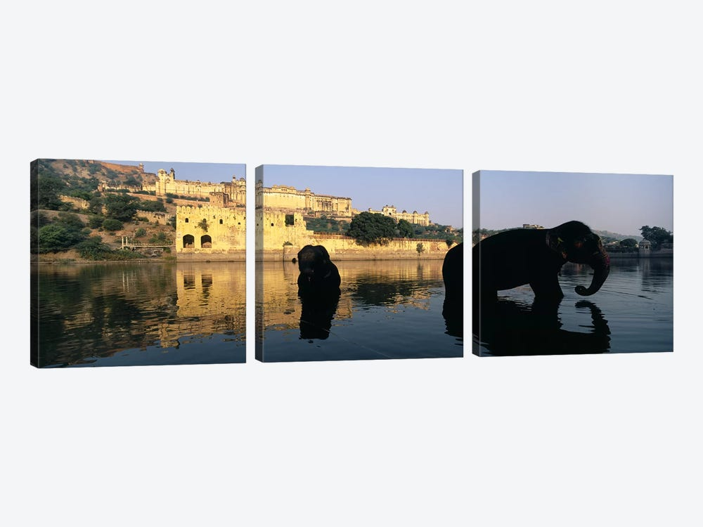 Silhouette of two elephants in a river, Amber Fort, Jaipur, Rajasthan, India by Panoramic Images 3-piece Canvas Wall Art