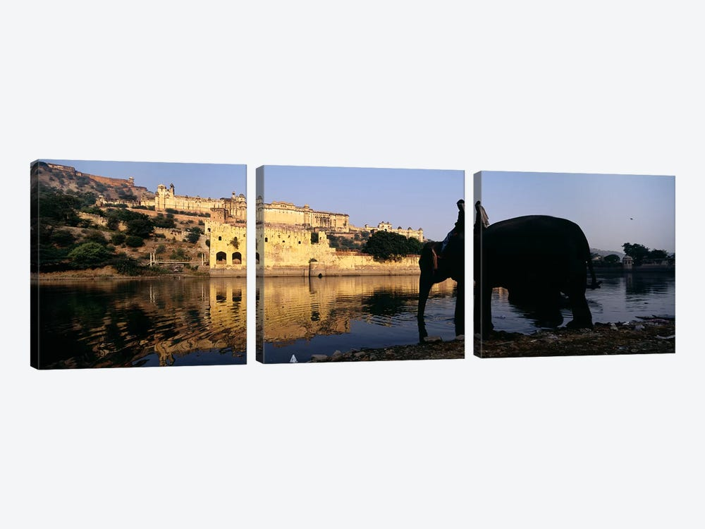 Side profile of a man sitting on an elephant, Amber Fort, Jaipur, Rajasthan, India by Panoramic Images 3-piece Canvas Wall Art