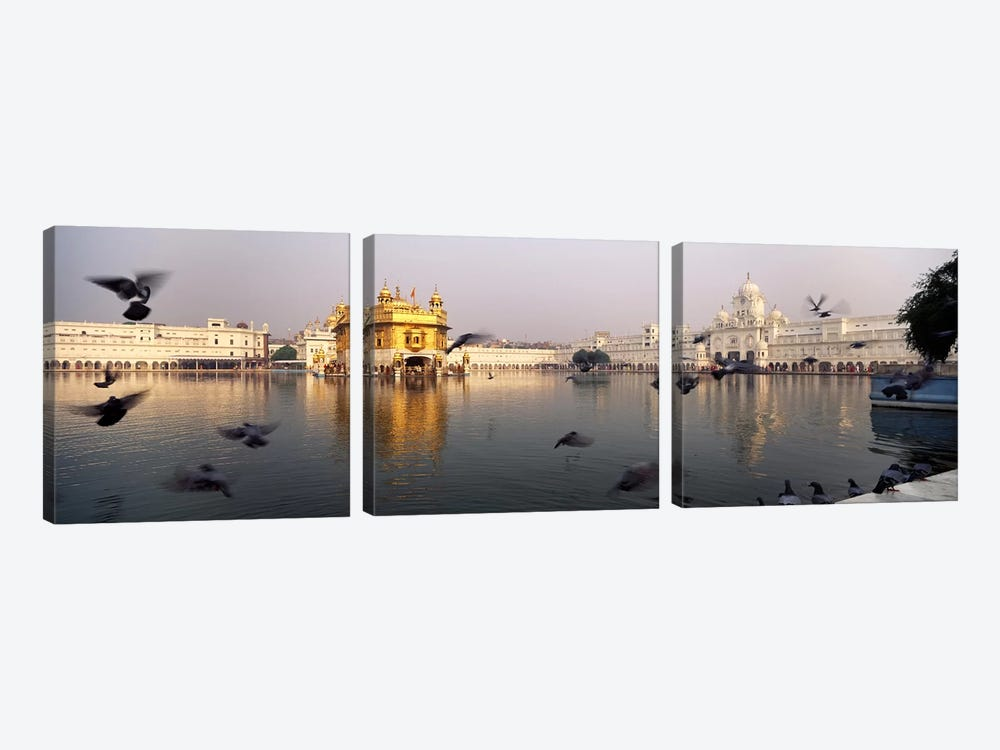 Reflection of a temple in a lake, Golden Temple, Amritsar, Punjab, India by Panoramic Images 3-piece Art Print
