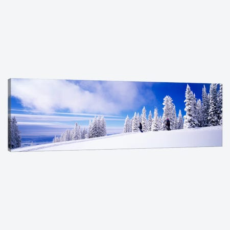 Steamboat Springs, Colorado, USA Canvas Print #PIM553} by Panoramic Images Canvas Art