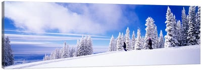 Steamboat Springs, Colorado, USA Canvas Art Print