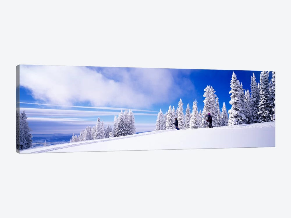 Steamboat Springs, Colorado, USA by Panoramic Images 1-piece Canvas Art