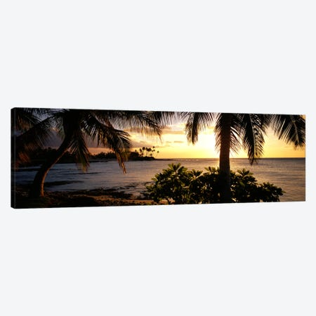 Kohala Coast, Hawaii, USA Canvas Print #PIM554} by Panoramic Images Canvas Print