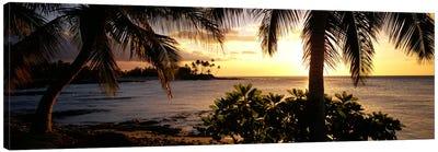 Kohala Coast, Hawaii, USA Canvas Art Print