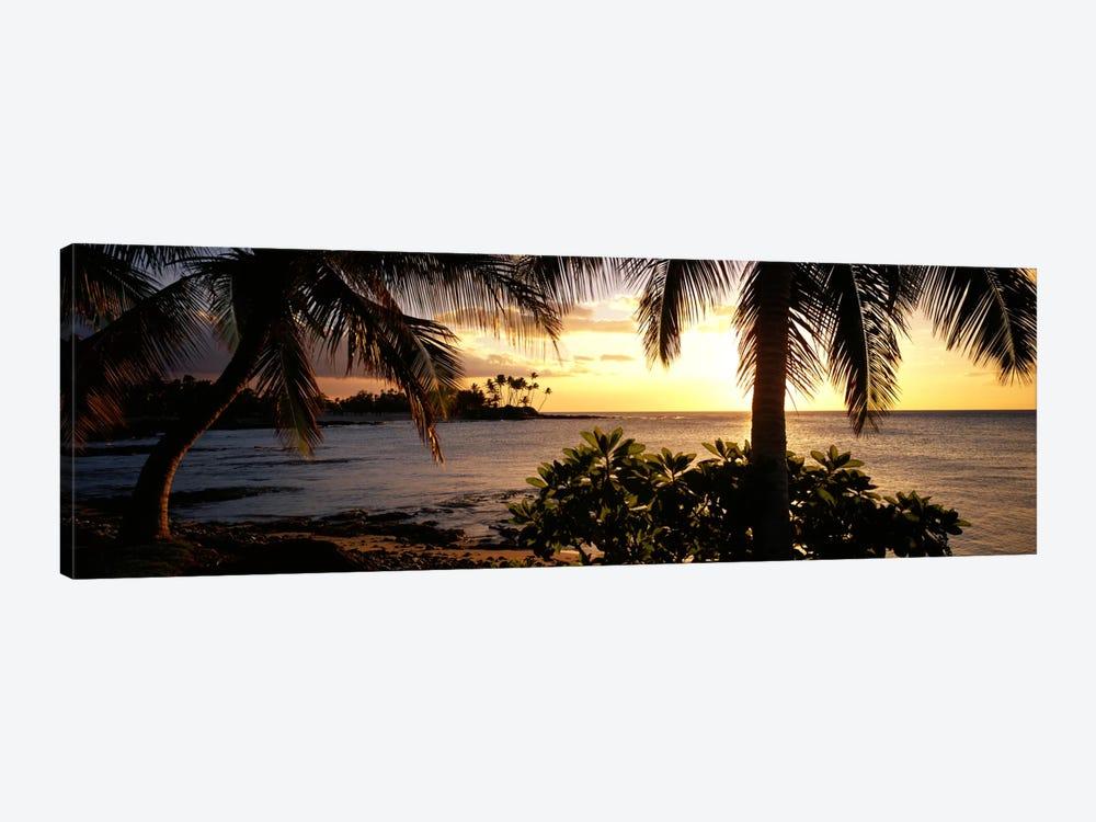 Kohala Coast, Hawaii, USA by Panoramic Images 1-piece Art Print