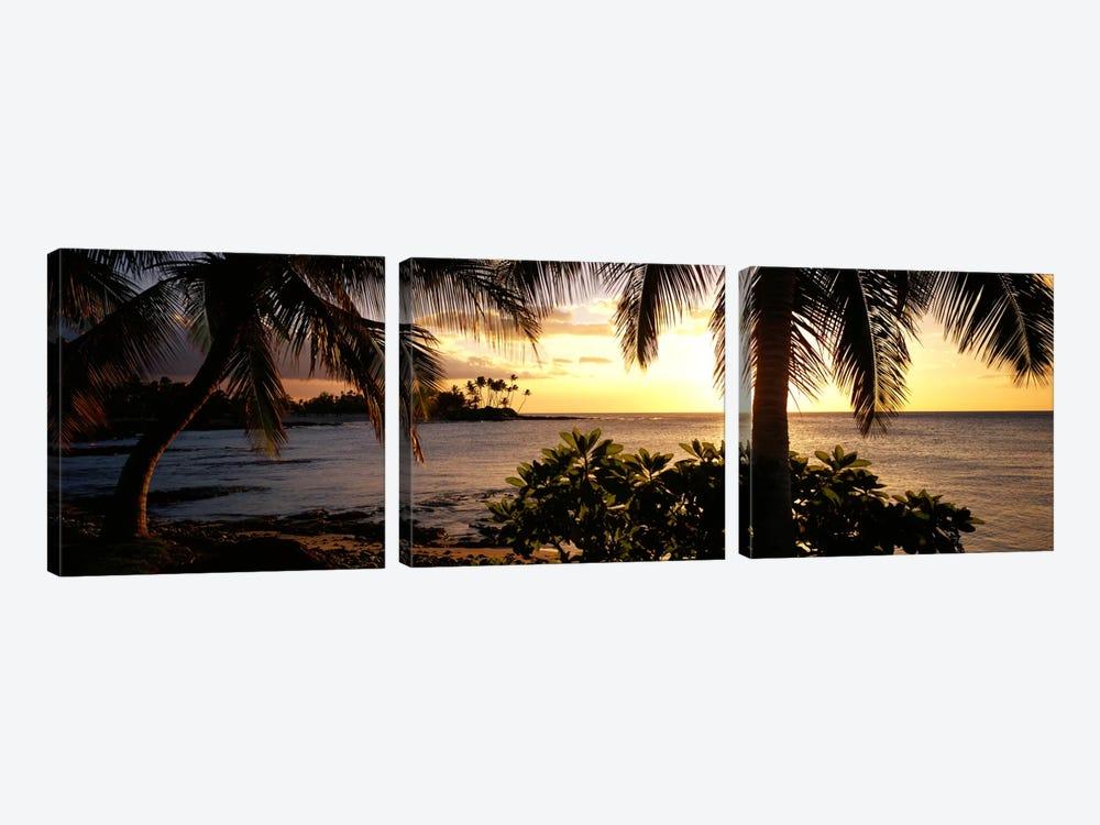Kohala Coast, Hawaii, USA by Panoramic Images 3-piece Art Print