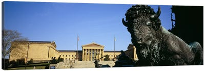 Close-up of a sculpture of a buffalo with a museum in the background, Philadelphia Museum Of Art, Philadelphia, Pennsylvania, USA Canvas Print #PIM5587