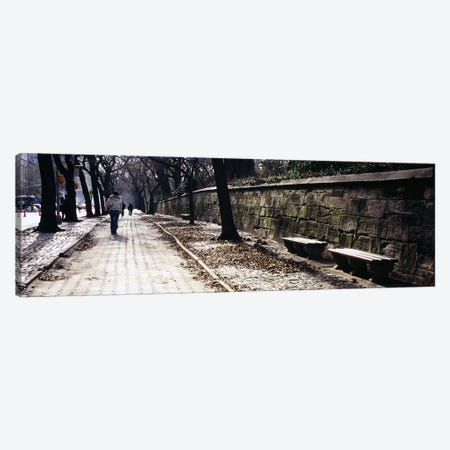 Rear view of a woman walking on a walkway, Central Park, Manhattan, New York City, New York, USA Canvas Print #PIM5597} by Panoramic Images Art Print