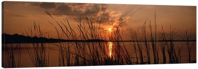 Sunset over a lake, Lake Travis, Austin, Texas Canvas Art Print