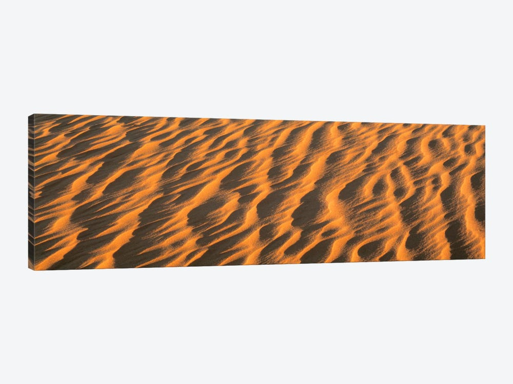 Wind blown Sand TX USA by Panoramic Images 1-piece Canvas Art