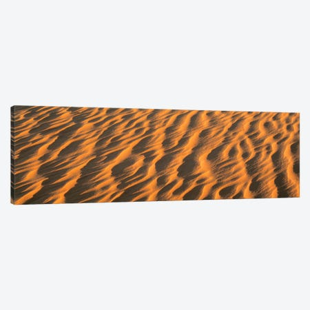 Wind blown Sand TX USA Canvas Print #PIM566} by Panoramic Images Canvas Wall Art
