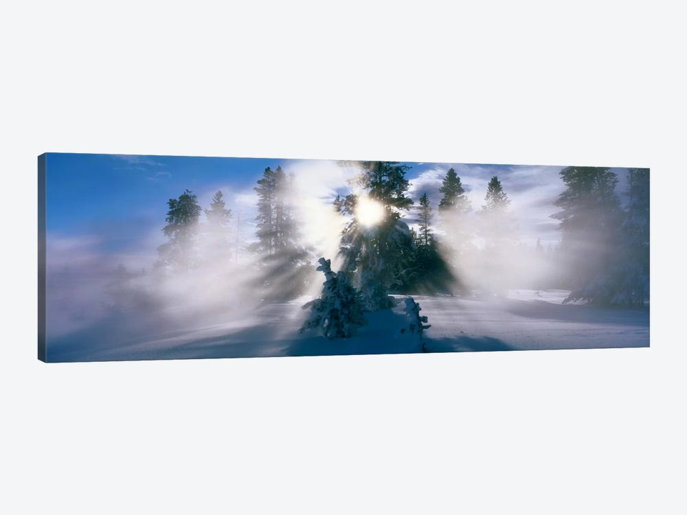 West Thumb Geyser Basin Yellowstone National Park WY by Panoramic Images 1-piece Canvas Artwork