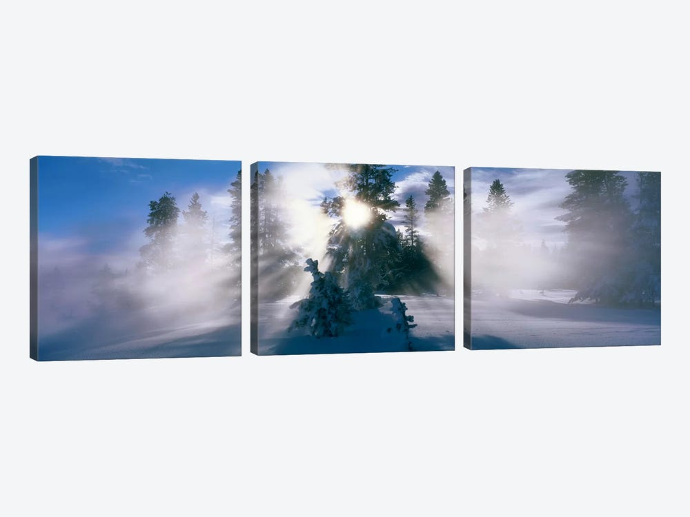 West Thumb Geyser Basin Yellowstone National Park WY by Panoramic Images 3-piece Canvas Wall Art