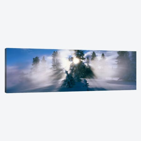 West Thumb Geyser Basin Yellowstone National Park WY Canvas Print #PIM568} by Panoramic Images Canvas Art Print