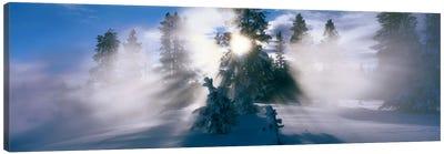 West Thumb Geyser Basin Yellowstone National Park WY Canvas Art Print