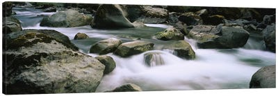River flowing through rocksSkokomish River, Olympic National Park, Washington State, USA Canvas Art Print