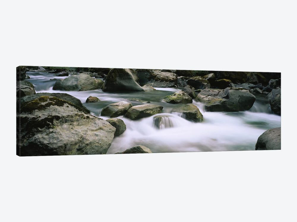 River flowing through rocksSkokomish River, Olympic National Park, Washington State, USA by Panoramic Images 1-piece Art Print