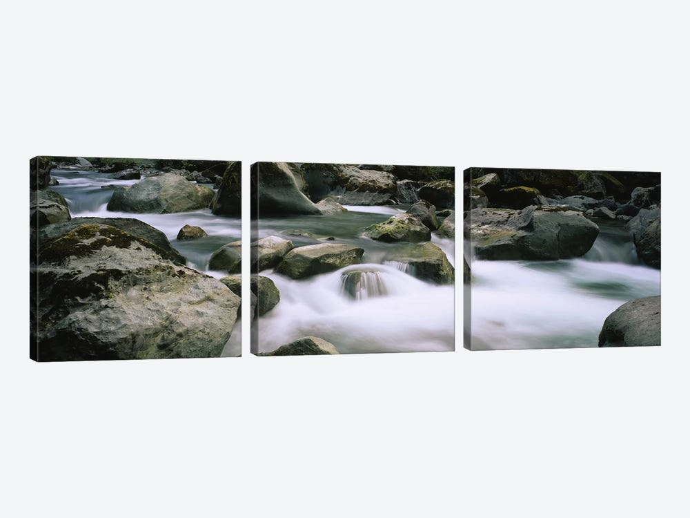River flowing through rocksSkokomish River, Olympic National Park, Washington State, USA by Panoramic Images 3-piece Canvas Art Print