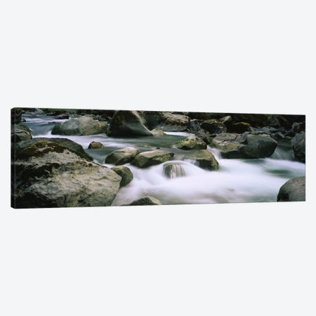 River flowing through rocksSkokomish River, Olympic National Park, Washington State, USA Canvas Print #PIM5755} by Panoramic Images Canvas Art Print