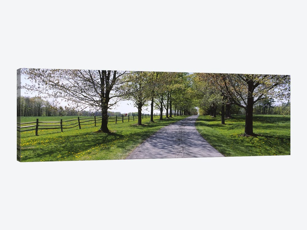 Road passing through a farm, Knox Farm State Park, East Aurora, New York State, USA 1-piece Canvas Art