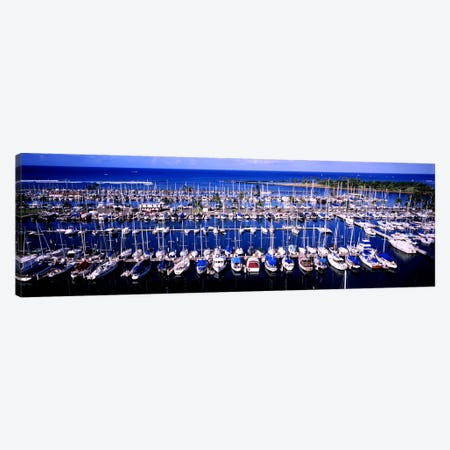 High angle view of boats in a row, Ala Wai, Honolulu, Hawaii, USA Canvas Print #PIM5786} by Panoramic Images Canvas Artwork