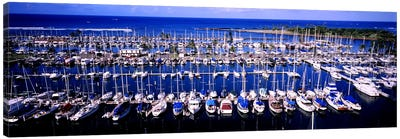 High angle view of boats in a row, Ala Wai, Honolulu, Hawaii, USA Canvas Art Print