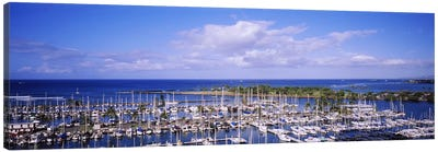 High angle view of boats in a row, Ala Wai, Honolulu, Hawaii, USA #2 Canvas Art Print