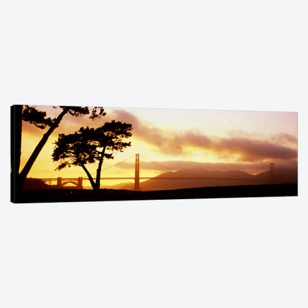 Silhouette of trees at sunset, Golden Gate Bridge, San Francisco, California, USA Canvas Print #PIM5790} by Panoramic Images Canvas Art