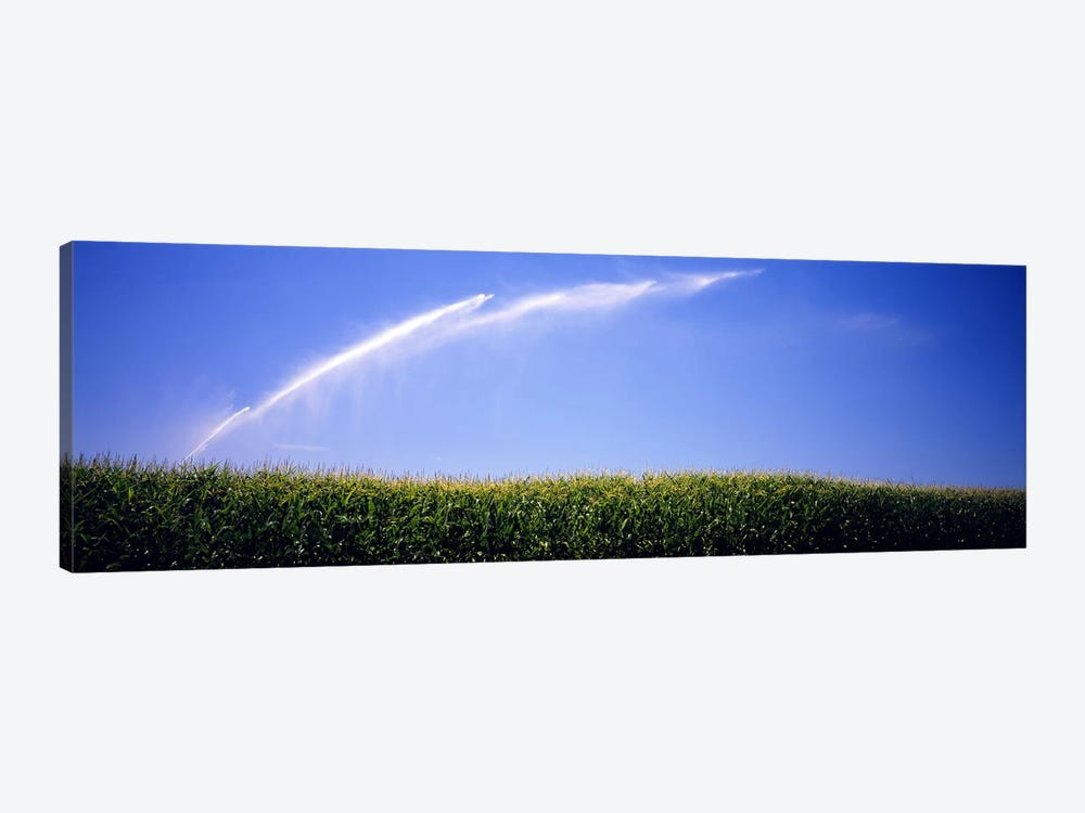 Water being sprayed on a corn field, Washington State, USA by Panoramic Images 1-piece Art Print