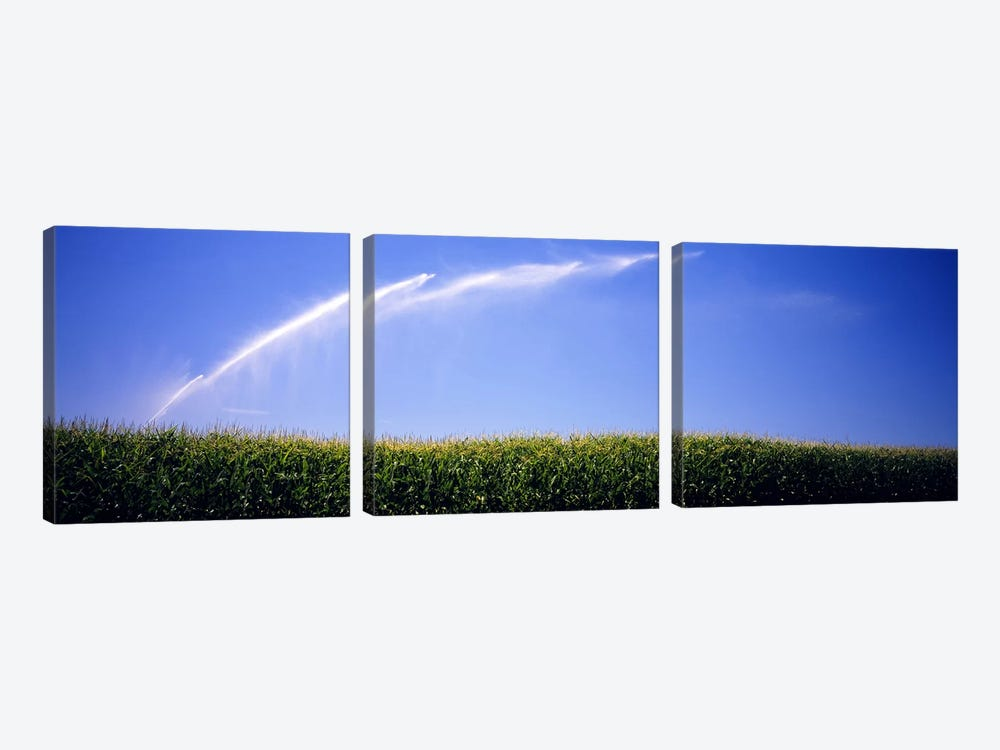 Water being sprayed on a corn field, Washington State, USA by Panoramic Images 3-piece Canvas Print