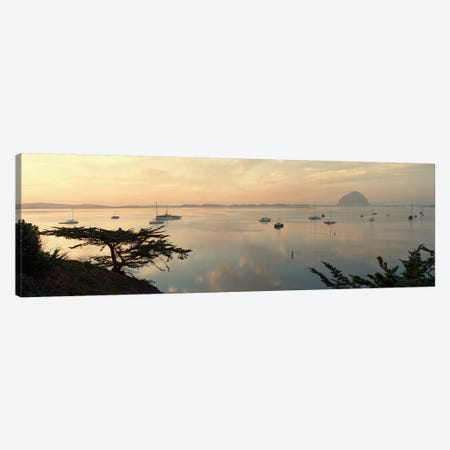 Distant View Of Morro Rock, San Luis Obispo, California, USA Canvas Print #PIM5842} by Panoramic Images Canvas Art