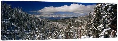 Wintry Alpine Forest Landscape, Lake Tahoe, Sierra Nevada Canvas Art Print