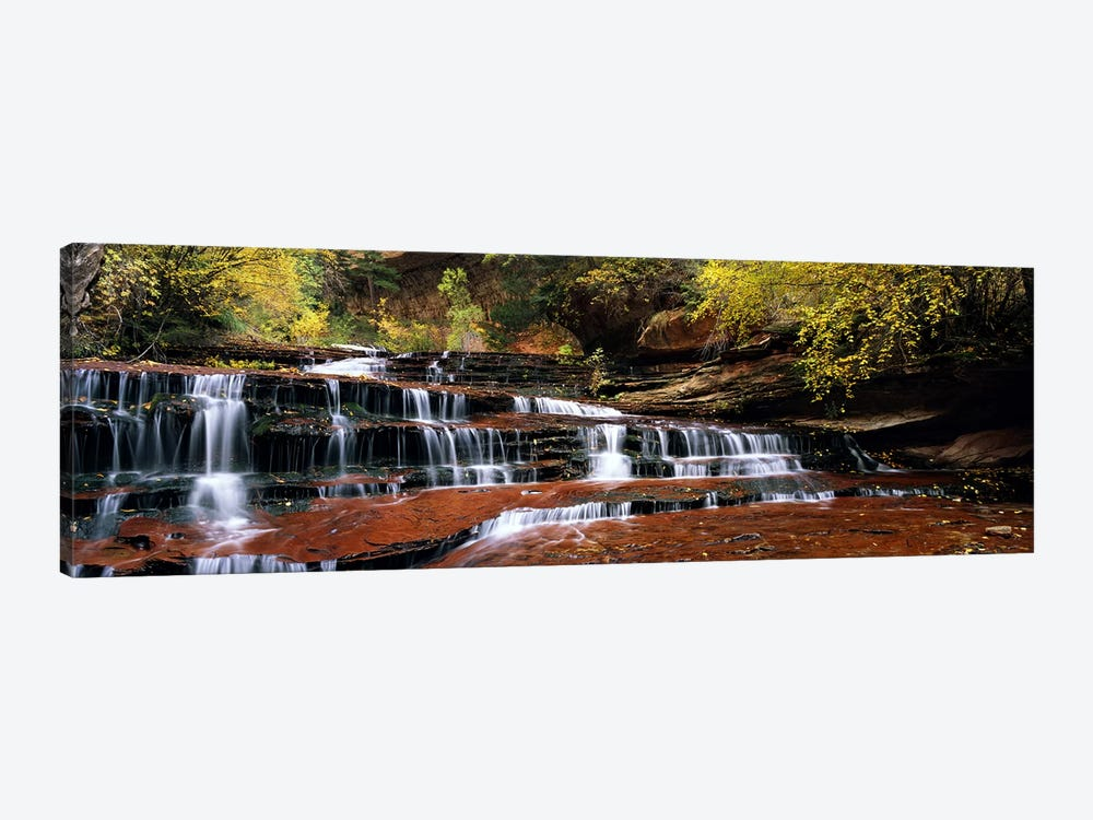 Waterfall in a forest, North Creek, Zion National Park, Utah, USA by Panoramic Images 1-piece Canvas Print